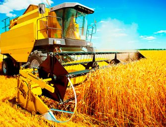 Agricoltura, Regione: 5 milioni per l'innovazione