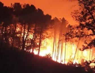 Pisano a fuoco: 500 evacuati
