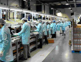 Lavoro, salgono a 2mln gli occupati in regione