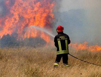 Incendi nei boschi, 10 milioni per prevenirli