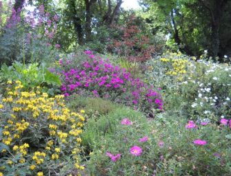 'ViVi il verde', scopri i giardini emiliani