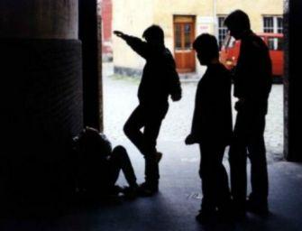 Melato (Lega): avevamo ragione a denunciare l'ascesa delle babygang a Reggio