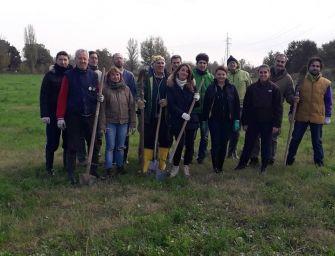 A Reggio il M5S pianta 400 nuovi alberi