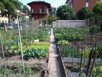 Reggio, assegnazione orti urbani: c'è ancora tempo per la domanda