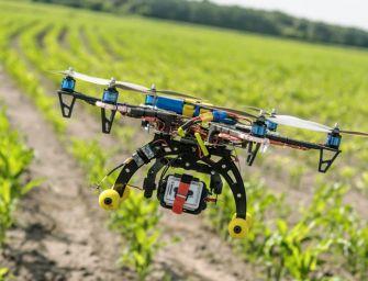 Agricoltura, Emilia leader per progetti contro i cambiamenti climatici