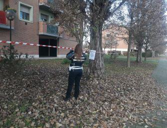 Modena. Bocconi sospetti al parchetto di Ganaceto