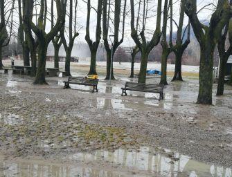 Coldiretti: ci sono danni per milioni di euro