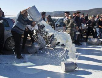 """Coop a fianco dei produttori sardi di latte: """"Assicureremo agli allevatori 1 euro al litro"""""""