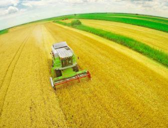 Mercato bio Ue vale 34 miliardi, Italia seconda per coltivazioni