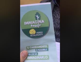 """""""Immagina Reggio"""", verdi ecologisti in una lista civica a sostegno del Pd"""
