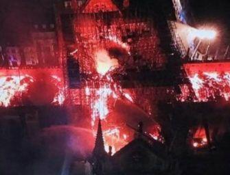Notre Dame, salva struttura principale