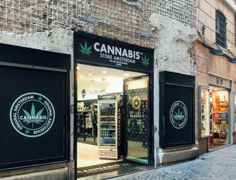 Cassazione: fine della vendita della Cannabis light