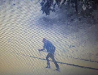 Nevicata eccezionale a maggio. A Baiso sugli sci