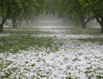 Coldiretti Emilia Romagna, per il maltempo ancora danni all'agricoltura