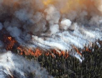Centinaia di incendi, l'Artico brucia: è un disastro ambientale