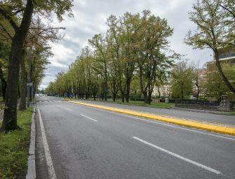 Reggio. Viale Umberto, Bonvicini ribadisce al Comitato: progetto già approvato, modifiche solo in corso d'opera