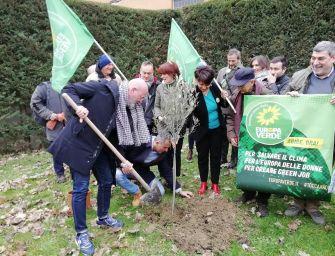 Europa Verde, Bonaccini pianta un ulivo: basta con balie e ventriloqui