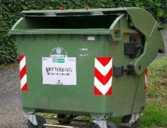Modena. Massacra di botte il suo cane e lo getta nel cassonetto dei rifiuti