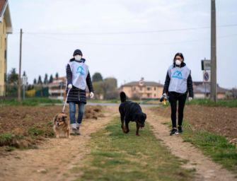Reggio, Comune e associazioni per gli animali