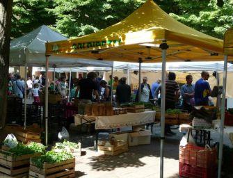 Reggio, approvata una mozione per lo sviluppo del Mercato del contadino e del biologico