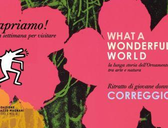 Reggio, da martedì 3 marzo riaprono le attività espositive della Fondazione Palazzo Magnani