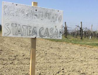 """""""State a casa"""", allarme della Cia Reggio"""