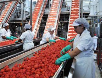 """In Emilia-Romagna la manodopera stagionale per l'agricoltura si cerca online sul portale """"Lavoro per te"""""""