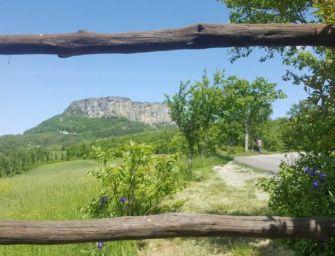 Montagna, 3mln a favore delle foreste
