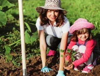 Educazione alimentare e bio nelle scuole