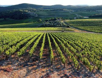 Nel Psr 2021-2022 dell'Emilia-Romagna oltre 160 milioni di euro per le aziende agricole e agroalimentari