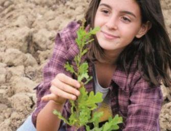 4,5 milioni di alberi in Emilia, il primo a Bobbio