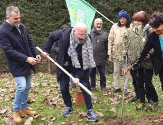 L'Emilia pianta 4,5 milioni di alberi