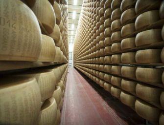 Il Parmigiano-Reggiano riparte dal weekend di Caseifici Aperti: 3 e 4 ottobre