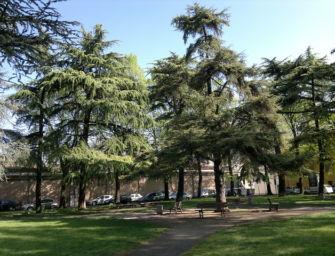 Reggio. Eboli e Aragona (FdI): aree verdi nel degrado. Anche San Zenone impraticabile