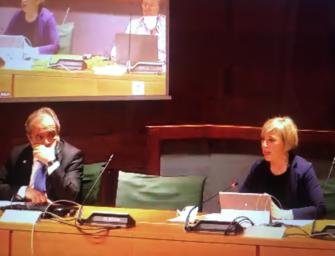 """Regione Emilia-Romagna, la riforma per """"internalizzare"""" l'Istituto per i beni culturali approda in commissione"""