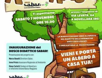 """""""Alberiamoci"""", nasce un parco didattico più green e sostenibile. Solo rinviata l'inaugurazione"""