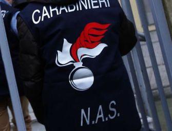 Controllo dei Nas in un bar della Bassa Reggiana: sequestrati 20 chili di alimenti scaduti o senza etichetta
