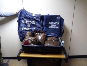 All'aeroporto Marconi di Bologna arrestato un corriere: aveva 7,5 kg di marijuana in valigia