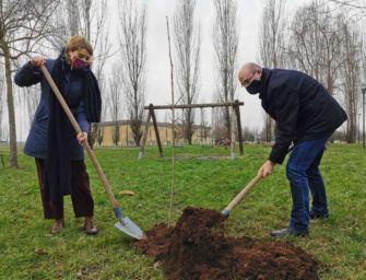 360mila alberi in regione, Reggio più green