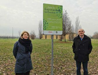 1.000 nuovi alberi a Reggio Emilia grazie al sostegno di E.ON