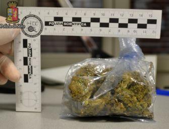 Arrestati due spacciatori a Budrio e Monghidoro: avevano 5 chili e mezzo di marijuana in casa