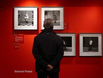 """Reggio, prorogata fino al 4 luglio la mostra """"True Fictions"""" a Palazzo Magnani"""