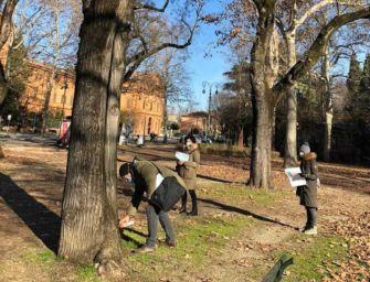 Reggio. Interventi urgenti alle Sophore e riqualificazione dei Giardini pubblici