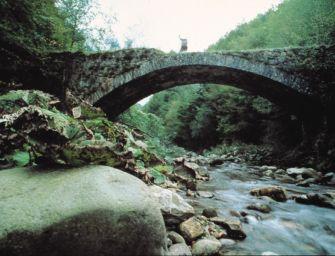 Nel Reggiano conclusi i lavori per migliorare il deflusso delle acque nel bacino dell'alto Enza