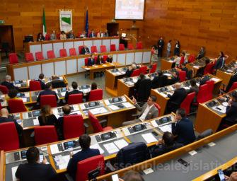 "Regionalismo differenziato, Petitti (ER): ""Assemblea legislativa sempre protagonista"""