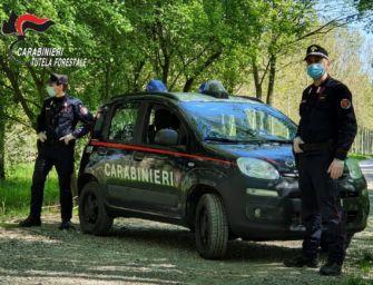 A Castellarano due persone denunciate dai carabinieri forestali per gestione non autorizzata di rifiuti