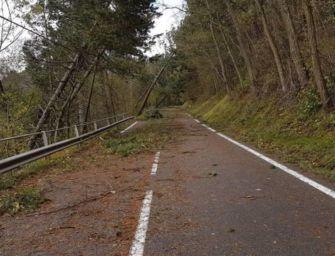 Estesa anche a sabato 13 marzo l'allerta meteo arancione per vento forte sulle alture dell'Emilia-Romagna
