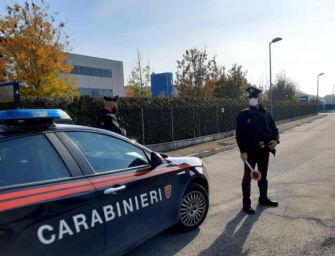 Rissa in un'azienda di Luzzara, identificati e denunciati cinque dipendenti