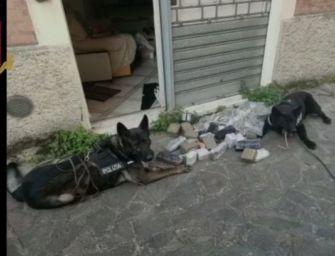 Bologna. Nascondeva oltre 18 kg di hashish e marijuana in un alloggio di via Lombardi: arrestato