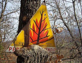 Dal 15 giugno in tutta l'Emilia-Romagna scatta la fase di attenzione per gli incendi boschivi